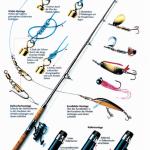 Raubfischrute: Warum die Spinnrute optimal zum Raubfisch fischen geeignet ist!