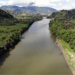 Angeln im Amazonas: Das solltest du beim Amazonasangeln beachten!