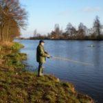 So kannst du Aale mit dem richtigem Köder angeln