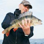 Was ist der richtige Köder zum Barsch angeln?