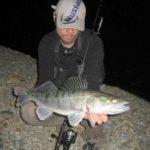 So kannst du Zander mit Köderfisch am Baggersee angeln